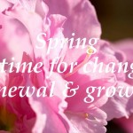 Spring 2015  - A time for change, renewal & growth